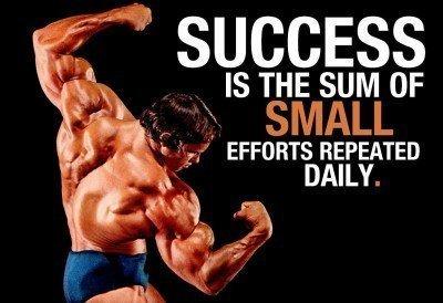 success schwarzenegger gym poster